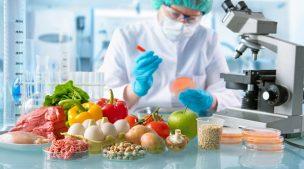 Retour sur la conférence de Sylvain Plantureux: La planète peut-elle nourrir aujourd'hui et demain l'humanité ?