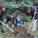 Triplé gagnant pour la biodiversité au lycée !